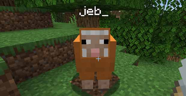 Rainbow sheep in Minecraft (jeb_ name tag)