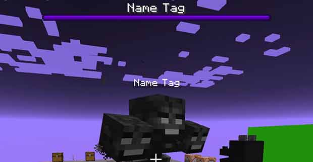 Named Wither Boss