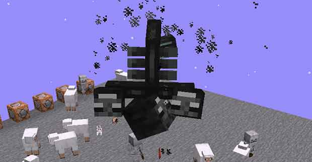 Upside Down Wither Boss Dinnerbone